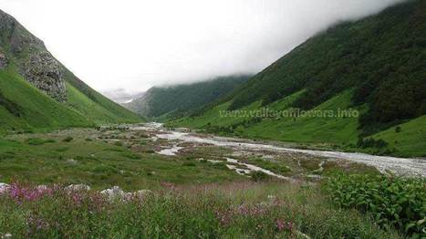 Valley of Flowers National Park, Uttrakhand, India | valley of flowers | Scoop.it