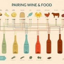 Wine Pairing Chart   Visual.ly   AP infographs   Scoop.it