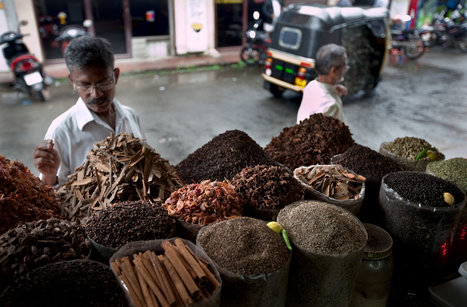 Salmonella in Spices Prompts Changes in Farming | Southern Geographies | Scoop.it