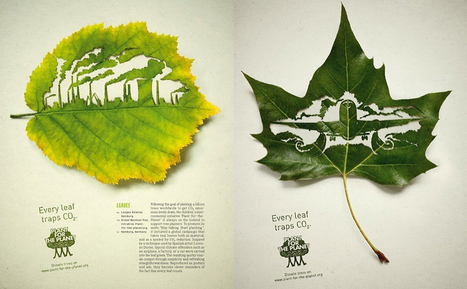 A Gorgeous Exploration Of The New Visual Language Of Sustainability | Harris Social Media | Scoop.it