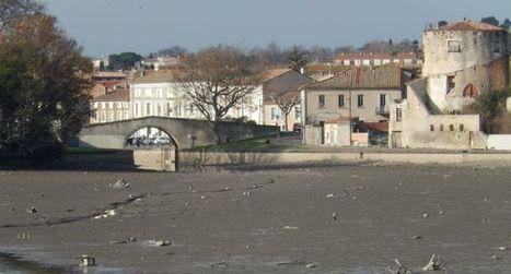 Qui va débarrasser le canal en chômage de ses déchets ? | Canal du midi (et Cie) | Scoop.it