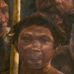DNA from 400,000 year old hominin: a great leap forward | Archaeology News | Scoop.it