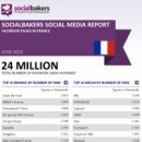June 2012 Social Media Report: Facebook Pages in France | Social Knowledge | Scoop.it