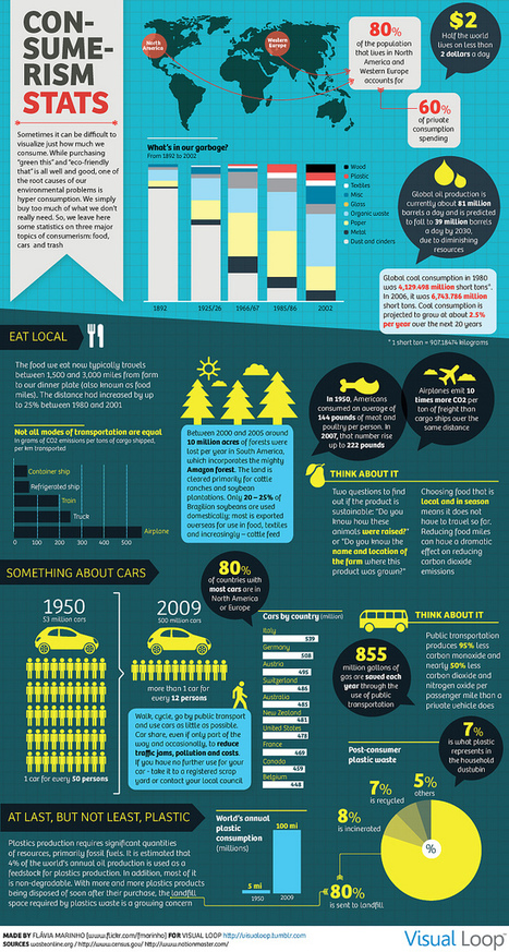 Visual Loop - Consumerism Stats | green infographics | Scoop.it