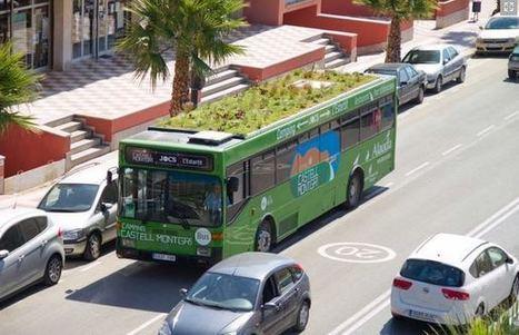 Il crée des jardins sur le toit des autobus publics   pour mon jardin   Scoop.it