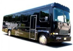 Party bus Detroit | People | Scoop.it