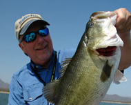 Bass Fishing at Stick Marsh - Florida Sportsman Magazine | Fishing | Scoop.it