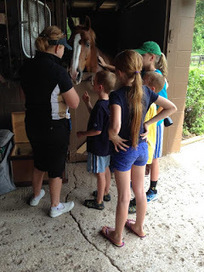 My Microcosm: Wendover Place Open House | Horses and Equine Related Info | Scoop.it