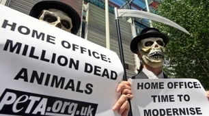 UK proposes greater transparency on animal research   Higher Education and academic research   Scoop.it