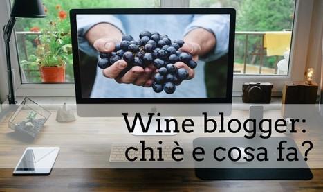 Comunicazione del vino. Wine blog: cos'è e a cosa serve | Social Media Consultant 2012 | Scoop.it