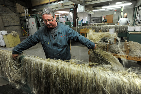 Killem: le teillage de lin Van Robaeys, l'entreprise «made in France» par excellence | Artisanat, textile, savoirs-faire | Scoop.it