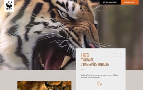 WWF France - 40 ans | Interactive & Immersive Journalism | Scoop.it