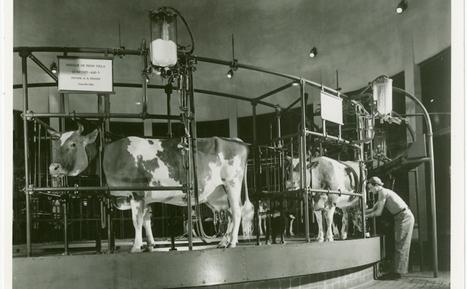 The Futuristic Farming at the 1939 World's Fair - Modern Farmer | Agriculture and Farming | Scoop.it