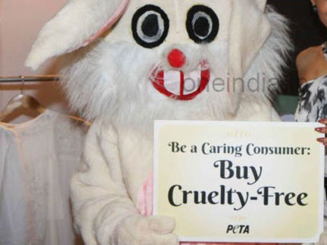 Our good work is being tarnished: PETA hits back at critics - Oneindia | Animals R Us | Scoop.it