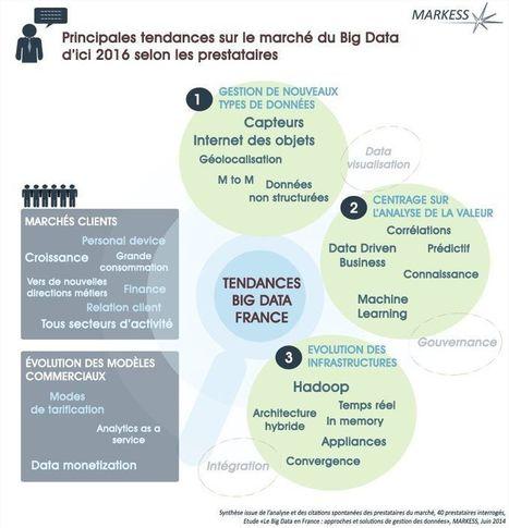 Big Data en France : les tendances à venir   Big Data au service du marketing   Scoop.it