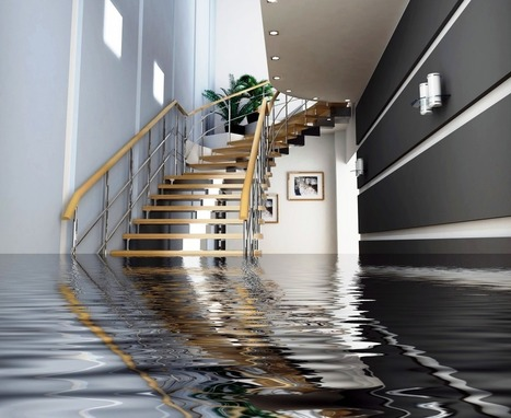 Tampa Water Damage – Cleanup and Mold Prevention | Water Damage Restoration | Scoop.it