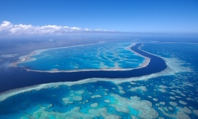 Death by sludge, coal and climate change for Great Barrier Reef? | Gaia Diary | Scoop.it