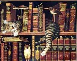 Livres numériques et collection : lever l'ambiguïté « Bertrand ... | Le numérique en bib | Scoop.it