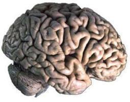 Psychologie : techniques de persuasion, manipulation et influence | ActuWiki | Ce que la psychologie peut nous apprendre... | Scoop.it