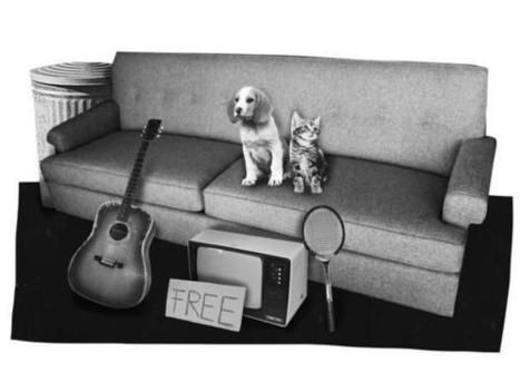 'Free' comes with a price | Animals R Us | Scoop.it