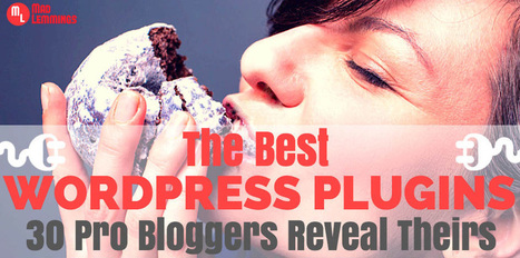 The Best WordPress Plugins of 2015 – 30 Pros Reveal Theirs | All About Blogging | Scoop.it