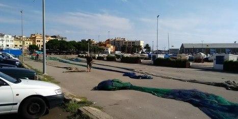 Comment pêcher à Palamos sur la Costa Brava   w3p-annuaire.com   Scoop.it