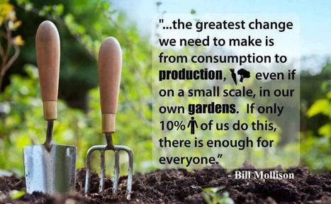 Grow Your Own Food   Save Our Planet   Scoop.it