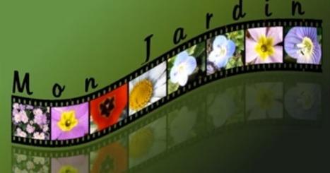 Tutoriel pour assembler vos photos façon film avec Gimp   L'e-Space Multimédia   Scoop.it