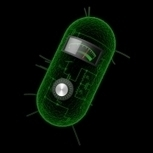 Cells as living calculators - MIT News Office | SpaceTrip4Us NOW | Scoop.it