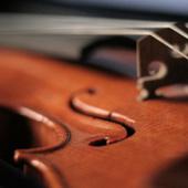 Classical Music Improves Surgery | Feline Health and News - manhattancats.com | Scoop.it