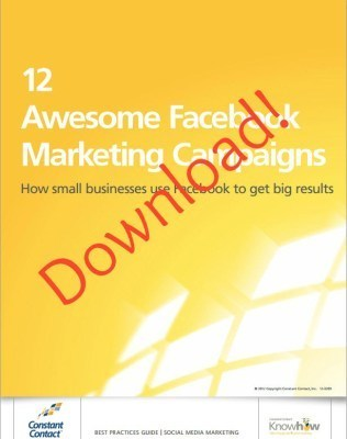 [GUIDE] 12 Awesome Facebook Marketing Campaigns | Writing for Social Media | Scoop.it