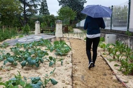 Commune sans pesticides: plus qu'une révolution technique, une révolution culturelle!   Planete DDurable   Scoop.it