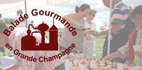 Balade Gourmande 2012 | Convivium de Segonzac en Grande Champagne | CITTA SLOW en français | Scoop.it