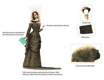 » Uniform botany Genevieve K. Walden | Botany Whimsy | Scoop.it