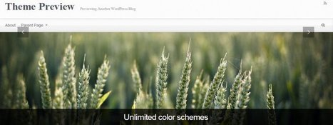 15 Free Parallax WordPress Themes | WordPress Website Optimization | Scoop.it