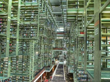Competencias bibliotecarias ligadas con la tecnología, marketing y liderazgo   Información, comunicación y TIC   Scoop.it