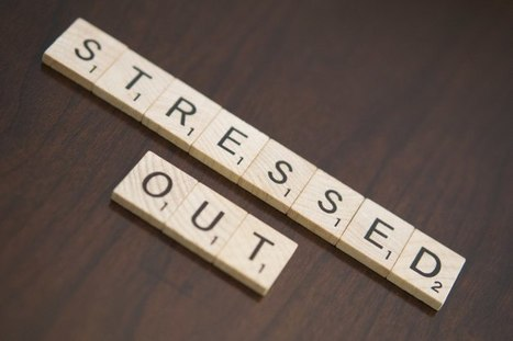 Mental Health Startup Lantern Launches Tool To ManageStress | Healthcare Marketing & PR | Scoop.it