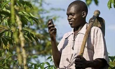 Les nouvelles TIC, une aubaine pour le développement de la filière agricole ? | Youth agriculture and ICT | Scoop.it