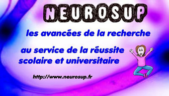 Heuristiquement: Neuroéducation et carte heuristique | E-pedagogie, apprentissages en numérique | Scoop.it