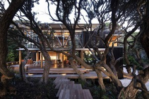 Award-Winning Beach House Surrounded by Trees | Digital-News on Scoop.it today | Scoop.it