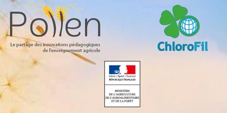 Pollen. Innovations pédagogiques de l'enseignement agricole | GREENEYES | Scoop.it