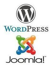 Migrating WordPress to Joomla [Infographic] - CMS2CMS | Joomla Rock! | Scoop.it
