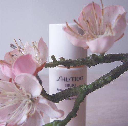 Le petit coffret Ibuki de Shiseido (cadeau) | Le rose aux joues