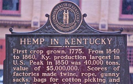 Kentucky Hemp Farmers Chance Prosecution   Cannabis Culture   Cannabis, MMJ and Hemp industries and business   Scoop.it