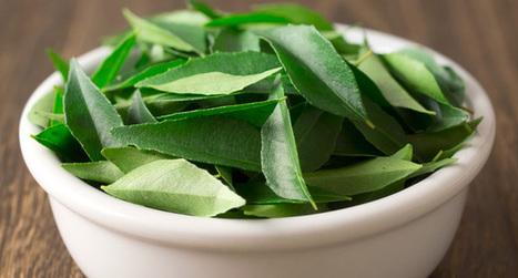 Se désintoxiquer par l'Ayurvéda - Santé Nutrition   Santé par les plantes   Scoop.it