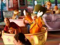 The Age-by-Age Guide to Disney World - iVillage | Disney Travel | Scoop.it