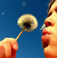 ero Lucy Van Pelt: Psicologia positiva | Il corriere della positività | Scoop.it