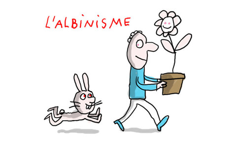 Ça veut dire quoi, être albinos ?   Ressources pour la classe de FLE et de français   Scoop.it