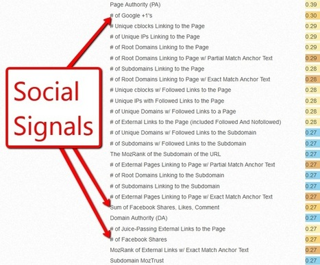 Social Signals: Search Is Looking To Social | Building a Web Presence | Scoop.it