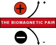 "Biomagnetism USA Testimonials | Campos magnéticos, ""BIOMAGNETISMO"" | Scoop.it"